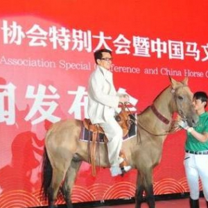 千亿国际qy886常务理事杨武庆与成龙、 张艺谋共同托起汗血宝马的中国梦