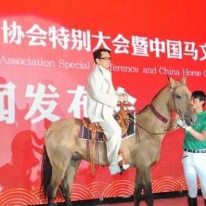 BOB棋牌app下载常务理事杨武庆与成龙、 张艺谋共同托起汗血宝马的中国梦