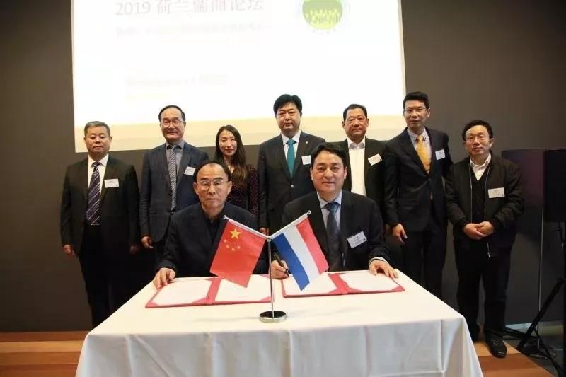 山东省民营企业家千亿国际qy886与荷兰、丹麦山东商会建立战略合作关系