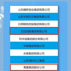 BOB棋牌app下载8家企业入选2020山东民企百强榜单